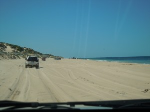 4wd Trip - Southern Shores