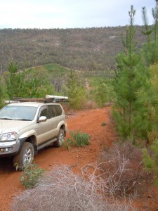 4wd Trip - Wandoo Country