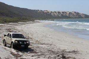 12 Easy 4WD Tracks Close To Perth That Everyone Must Try!